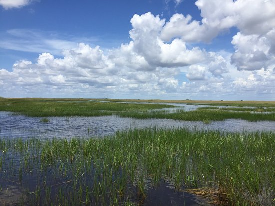 Coopertown Airboats: photo0.jpg