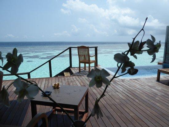 Lily Beach Resort & Spa: Desde la ventana de nuestra habitación, Se aprecia la piscina privaday las escaleras para bajar