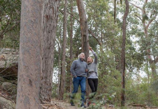 Spicers Sangoma Retreat: Bash walking trails on the Spicers Sangoma Property