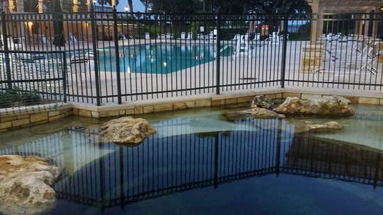 Green Cove Springs, FL: This is the public pool and historic springs across the street from the inn.
