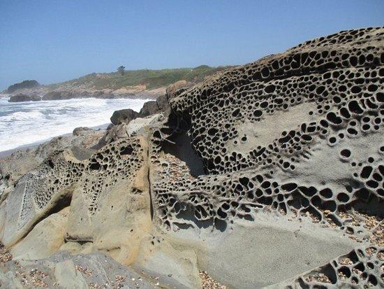 Pescadero, كاليفورنيا: Fascinating formations.