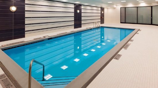 Indoor Pool Picture Of Hilton Chicago O 39 Hare Airport Chicago Tripadvisor