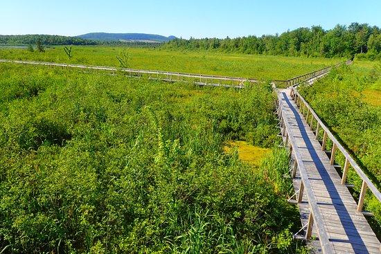 Danville, Canada: L'étang Burbank, à proximité de l'auberge.