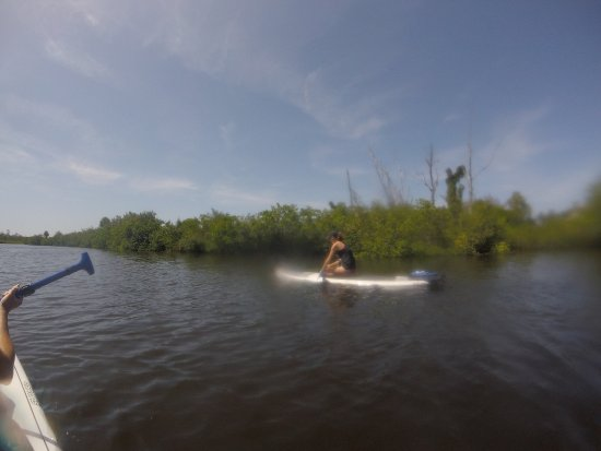 Paddle Pug SUP & Kayak Rental