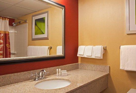Elmhurst, IL: Guest Bathroom