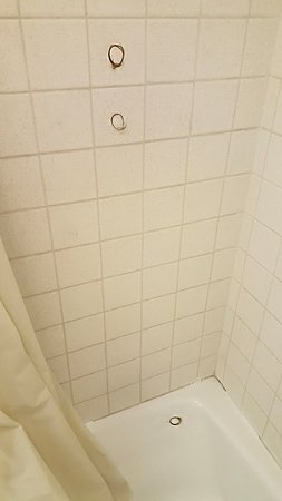 Evanston, WY: clumps of hair in shower