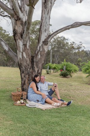Spicers Vineyards Estate : Organise a picnic from the Retreat and take a seat among the vineyards