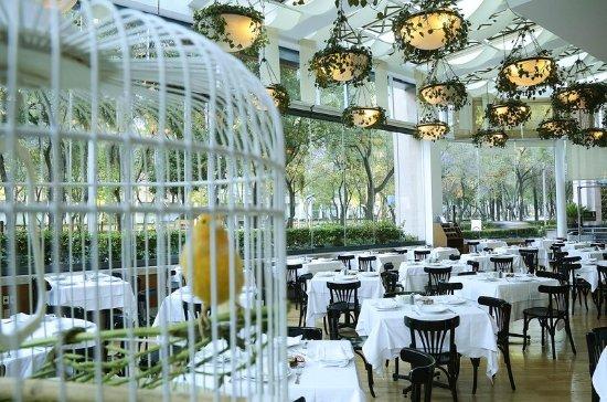 Marquis Reforma Hotel & Spa desde $ 370.149 (Ciudad de ... - photo#43