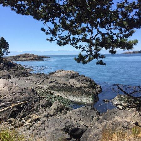 Lopez Island照片