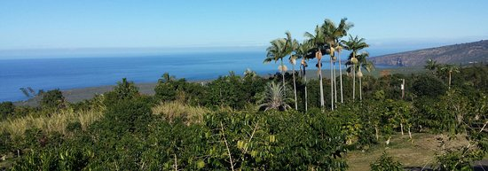 Honaunau, HI: Ocean view from Pele Plantations