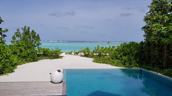 Niyama Private Islands Maldives: Our Private Pool with Beach & Lagoon!