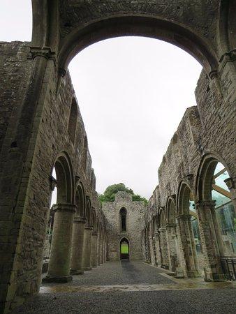 Boyle Abbey: the church walls