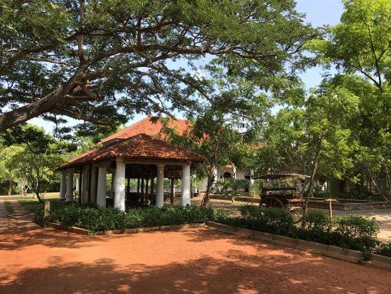 Thirappane, Sri Lanka: photo0.jpg
