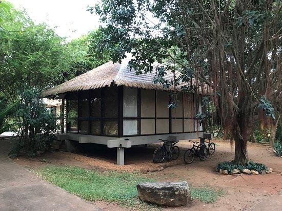 Thirappane, Sri Lanka: photo1.jpg