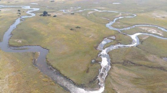Maun, Botswana: branches of okavango river