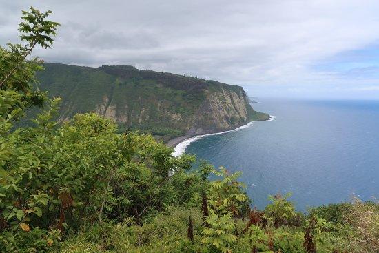 Honokaa, Hawái: 展望台からの眺め