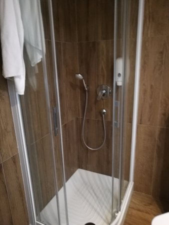 Hotel Emonec: Shower handle at waist level