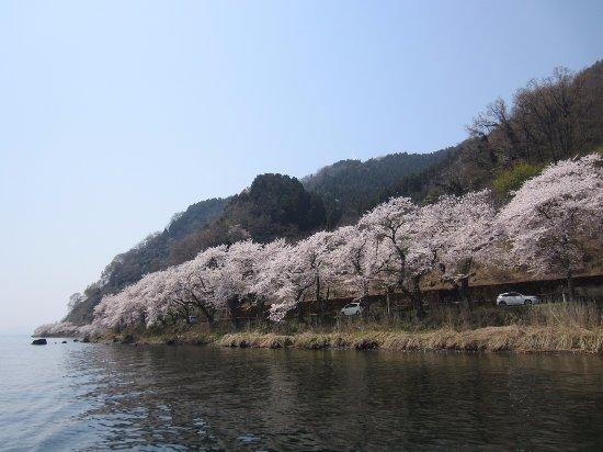 Kaizu Osaki: 写真ではなかなかこのきれいさは表せません。