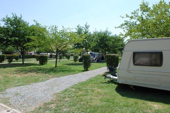 Ameglia, Italy: Piazzole Amaranto