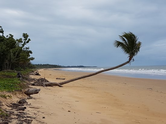 Wongaling Beach, Australia: Beachfront is across from the van park