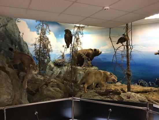 Beloretsk Museum of History and Local Lore