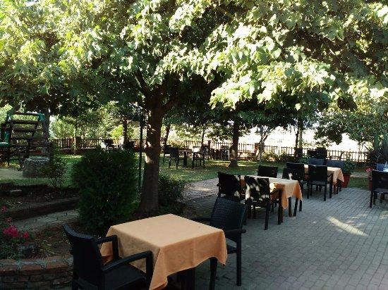 Η Ταβέρνα Του Αη Γιώργη: bahçe