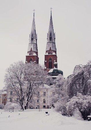 Uppsala Domkyrkan in winter. Beautiful student town.