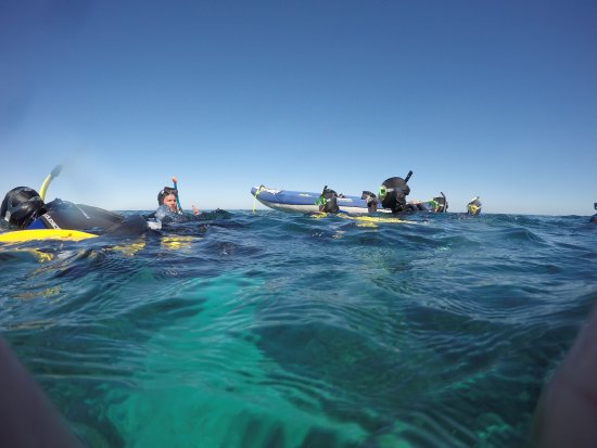 Coral Bay, Australien: G0110782_large.jpg