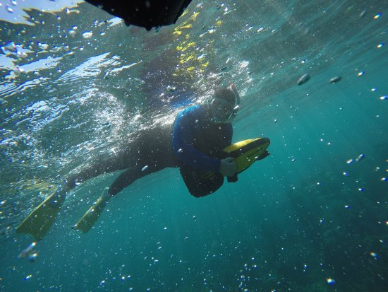 Coral Bay, Australien: G0180818_large.jpg