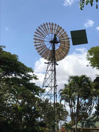 Wailuku, HI: Maui Tropical Plantation