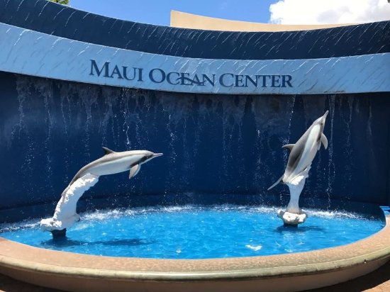 Wailuku, HI: Maui Ocean Center