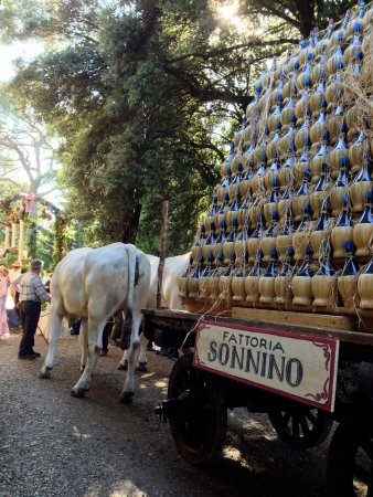 Montespertoli, Italy: La sfilata storica del Castello Sonnino