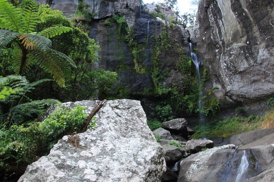 Koroyanitu National Heritage Park: The beautiful waterfall walk