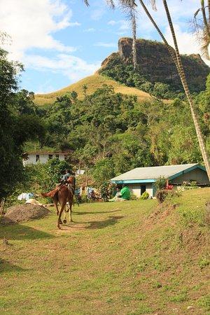 Koroyanitu National Heritage Park: Abaca