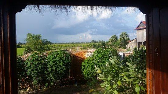 Kampong Thom, Kambodja: Balcon privatif avec une super vue sur les rizières et la campagne
