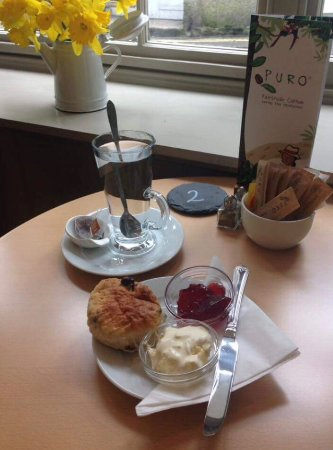 The Market Place: Cream teas to die for :)   And Gluten free options available