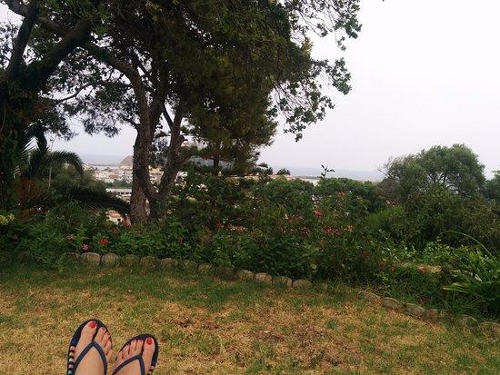 Les Mimosas : Vue de la terrasse en haut