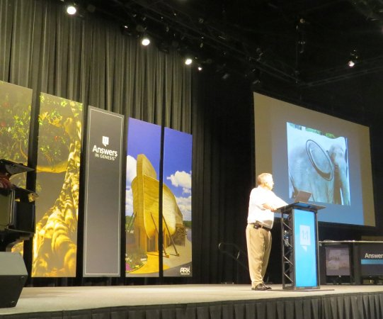 Creation Museum: Presentation of creation. By Tony Mitchell (?)