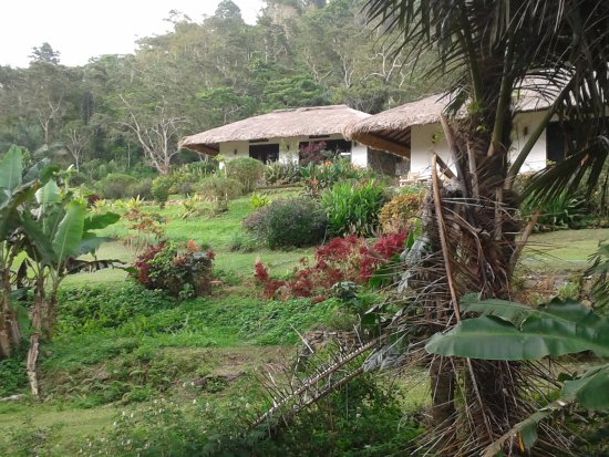 Kelimutu Crater Lakes Eco Lodge: A couple of lodges