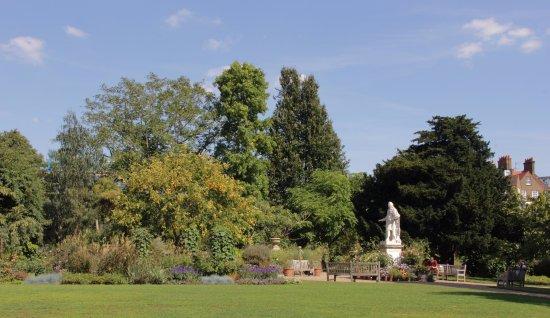 Chelsea Physic Garden: The Gardens