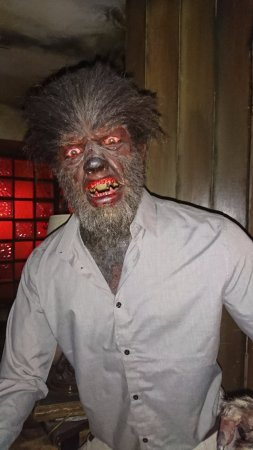The National Wax Museum Plus : Horror Hotel