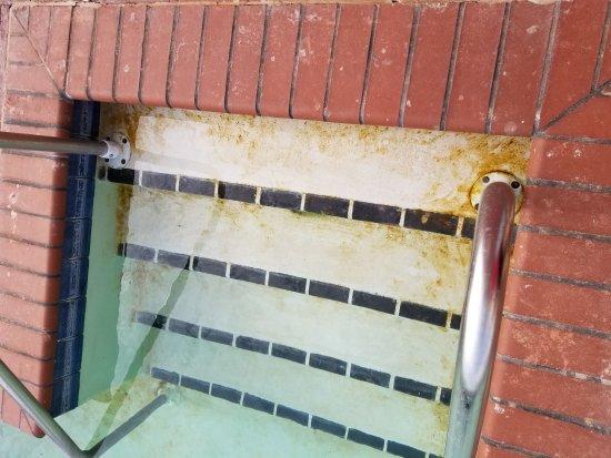 Elk City, Оклахома: Pool needed some serious work.