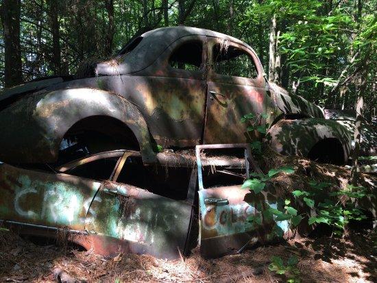 White, GA: photo3.jpg