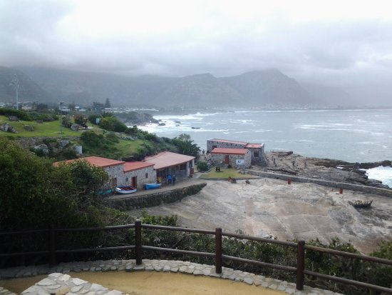 Hermanus, South Africa: Its midway downhill to the old harbour