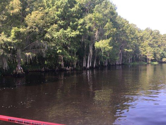 Κίσιμι, Φλόριντα: photo3.jpg