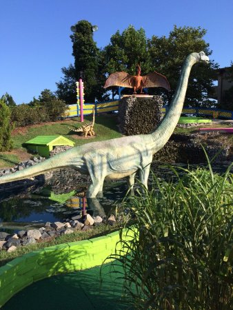 Paradise Cove Mini Golf