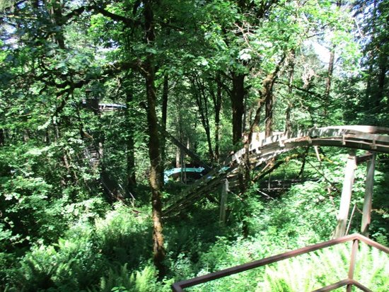 Salem, OR: Most rides are in treed areas so great on hot days.