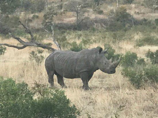 Singita Private Game Reserve, Νότια Αφρική: photo4.jpg