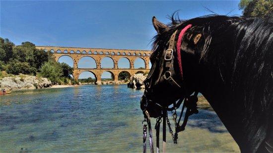 Centre Equestre Domaine Vieil Amandier