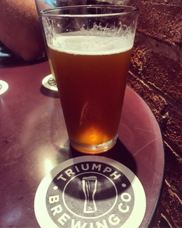 Triumph Brewing Company: The beer sampler helped us to make our final decision what beer/ale to order with our Triumph Bu